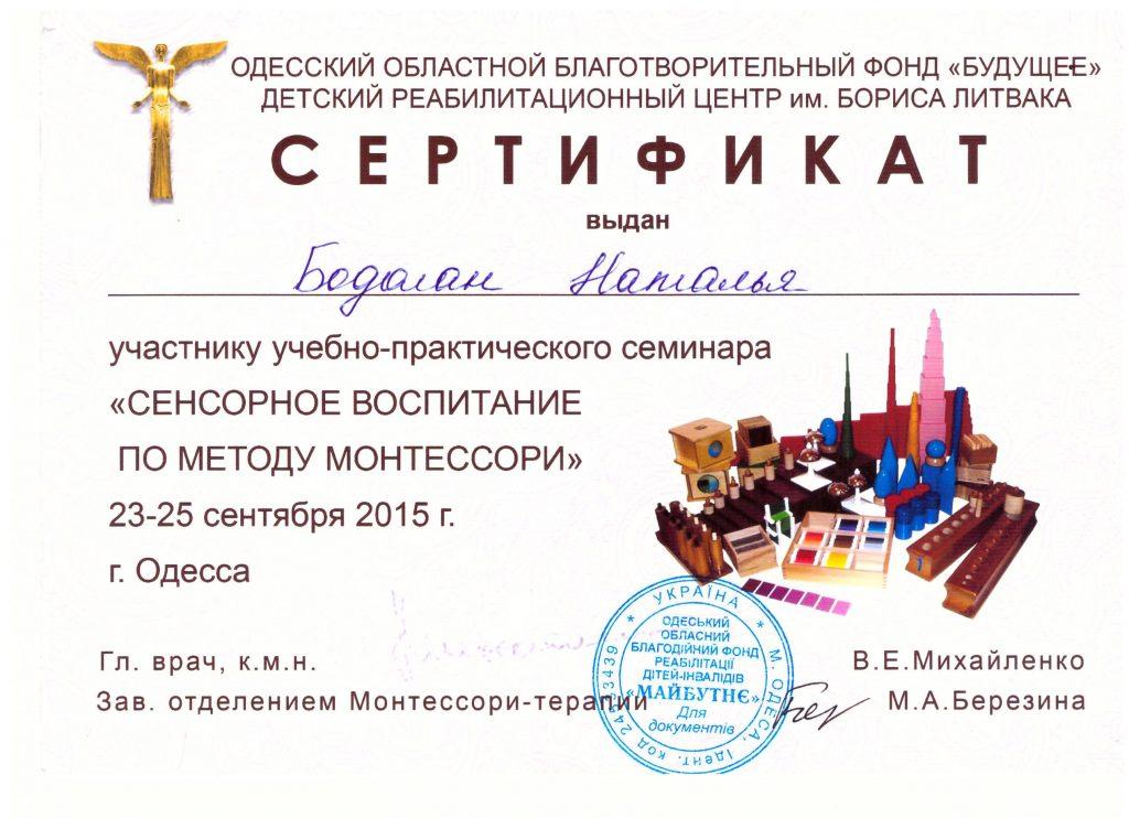 Сертификат Бодолан Наталья 4