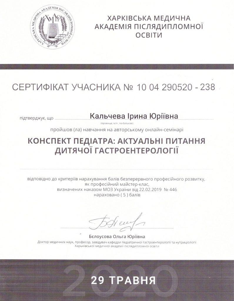 Кальчева - Сертификат 2